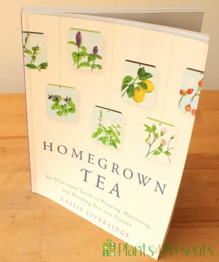 Book - GYO Tea