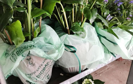 Biodegradable bags replaced plastic in 2018