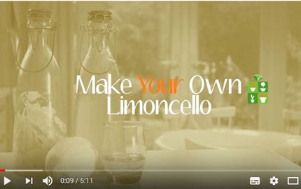 Make Your Own Limoncello video