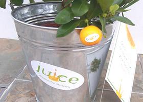 Juice Marketing Tags