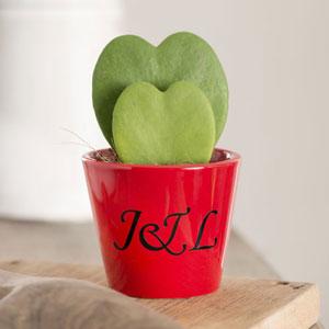 Customised Valentines Heart