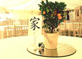 citrus trees at wedding